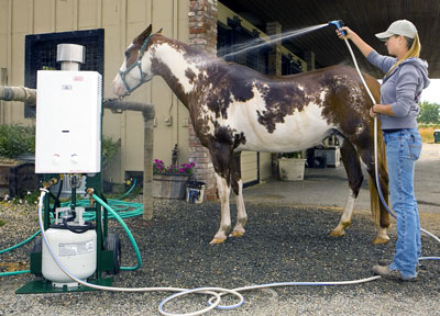 Hot Water Horse Wash